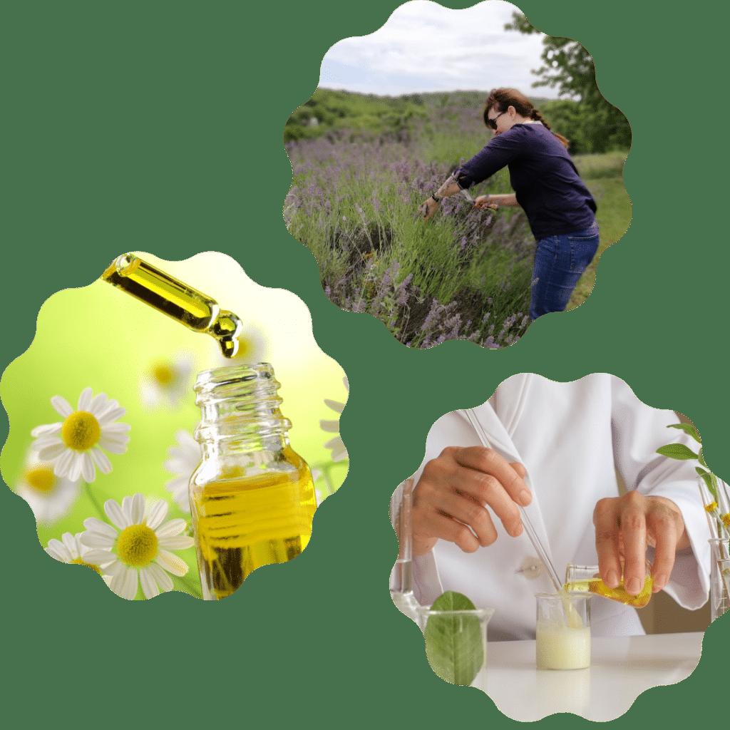 المستحضرات الطبيعية للبشرة
